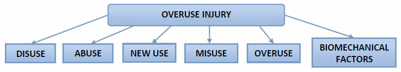 Overuse Injury Process